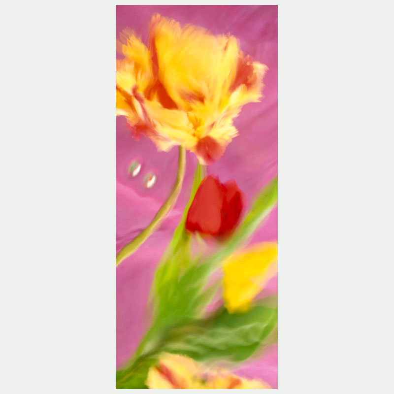 1161-s-bloemenballet_flaming-parrot_120x50