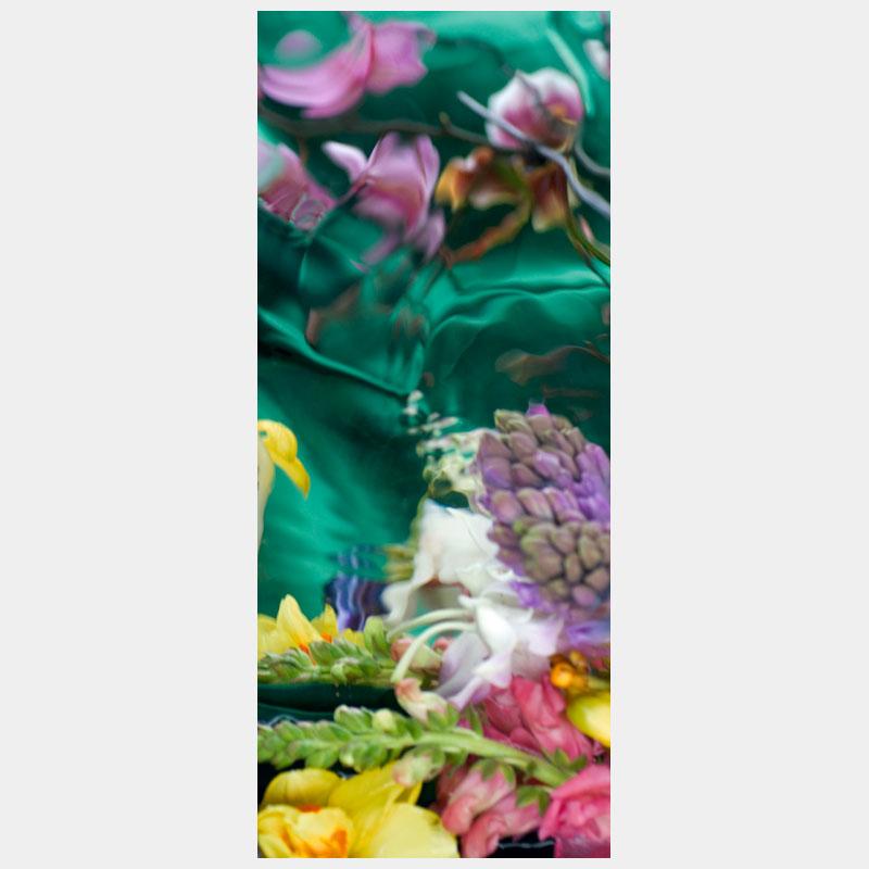 dreamy_orchids_8817_5x12cm_300dpi_ekleinveld