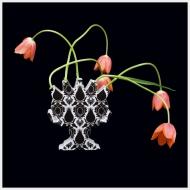 Tulip Mania III