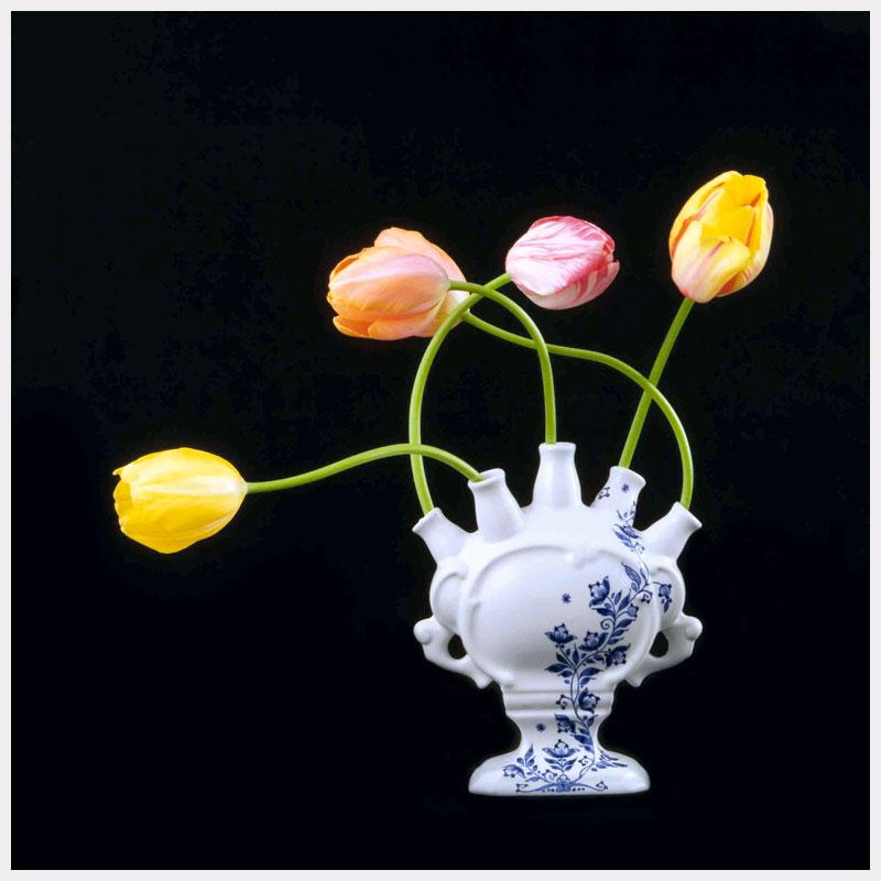 Tulip Mania IX