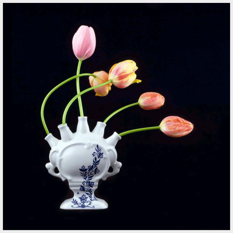 Tulip Mania X